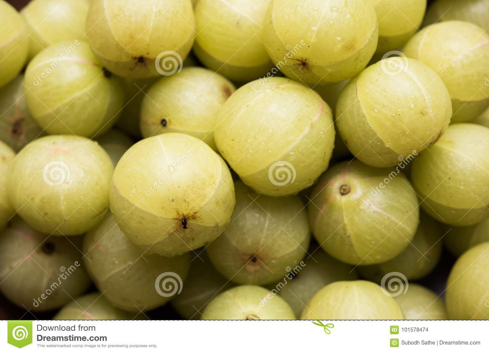 Indian gooseberry or Amla or avla fruit, selective focus