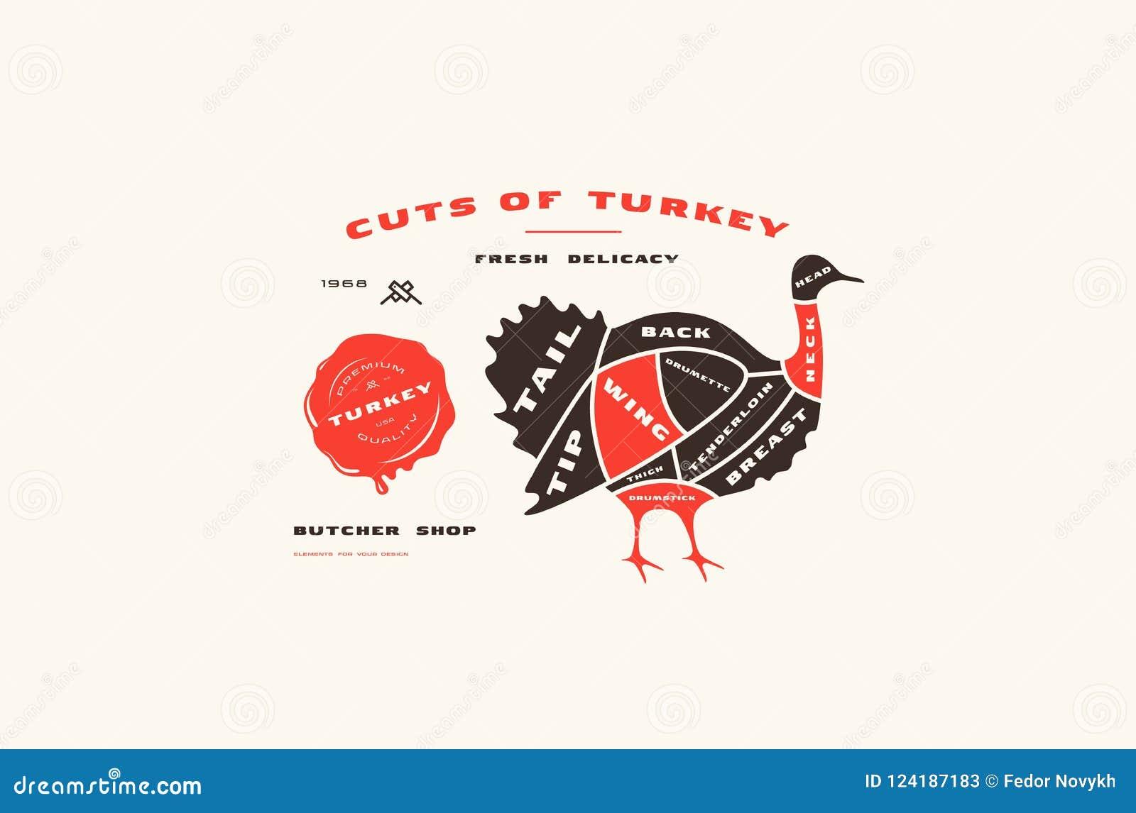 Diagram Of Wild Turkey - Wiring Diagram Database •