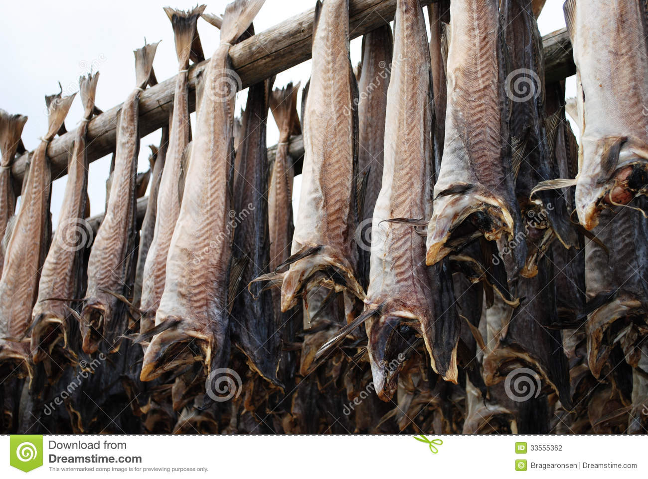 Clipart Dried Fish