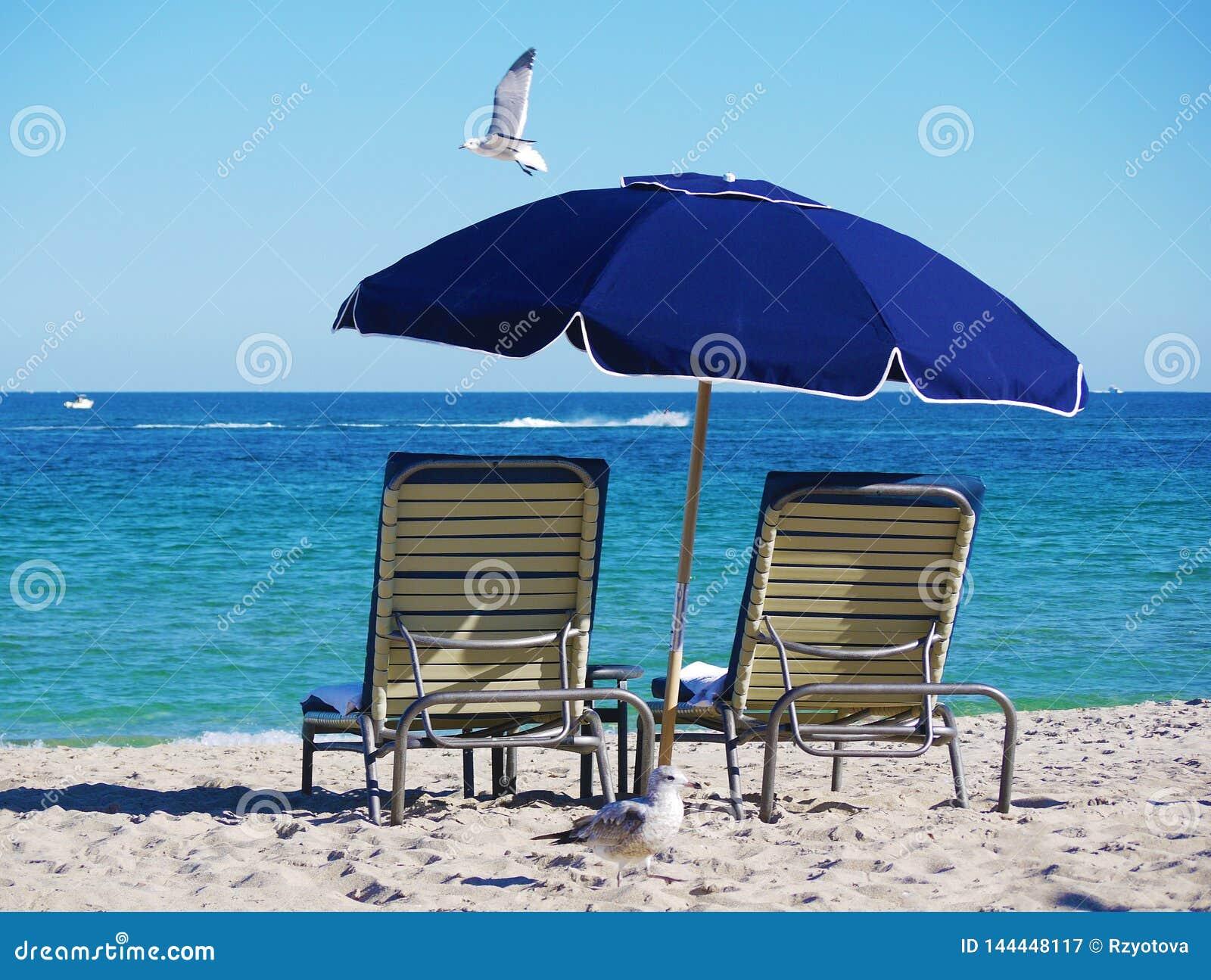 Stoelen en paraplu op het strand