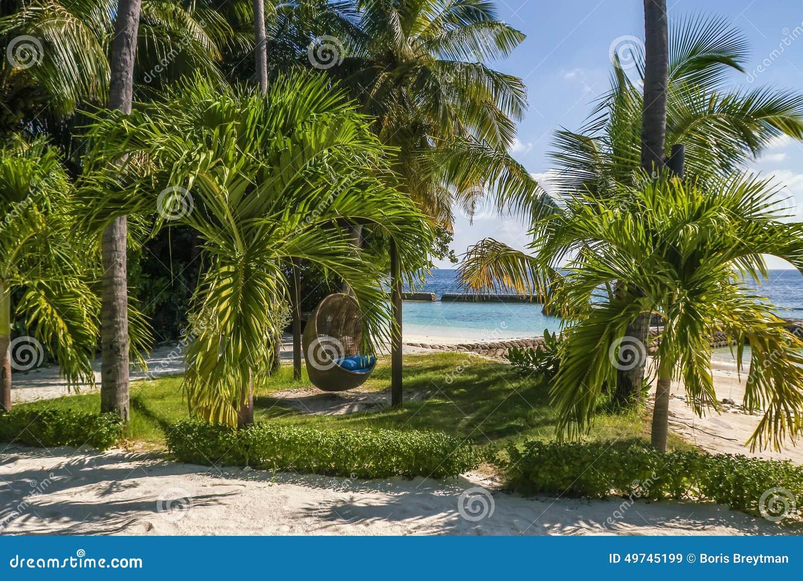 stol-gunga fotografering för bildbyråer. bild av maldives - 49745199