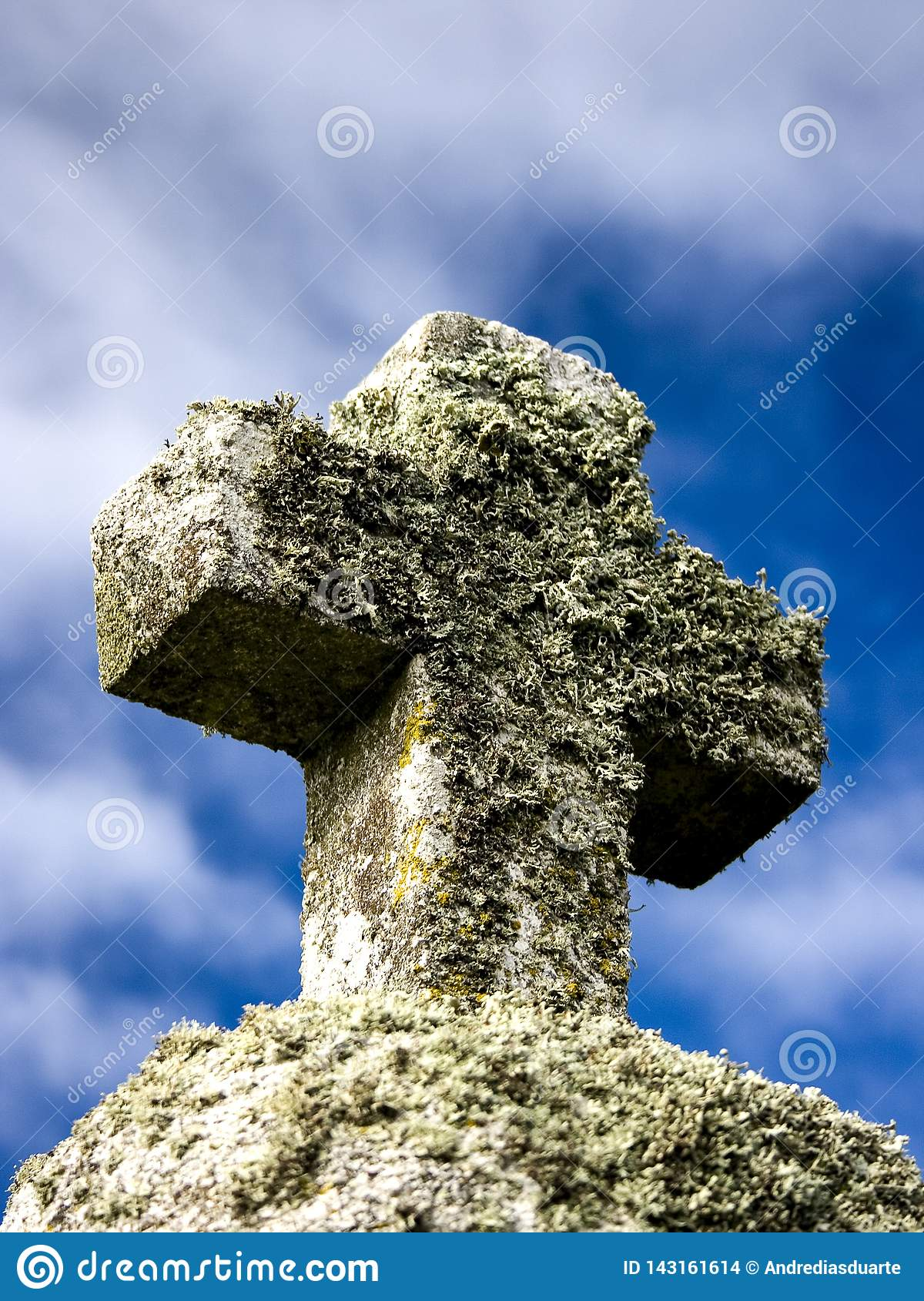 Stone cross with plants with sky as background