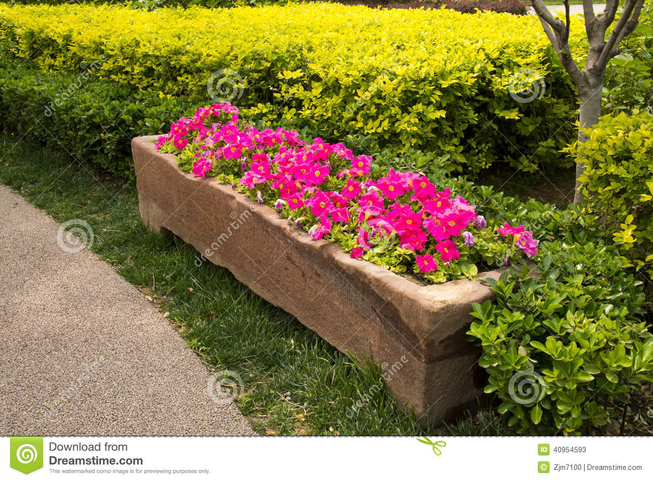 Stone flower bed flower stock photo image 40954593 for Green plants for flower beds
