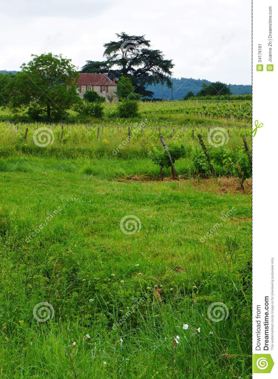 Fire lookout towers in the united states likewise 345919 as well Stock Image Stone House Vine Yard France Photograph Showing Rustic Old French Country Side Vineyard Front Image34176161 likewise Stucco likewise Latilla Ceilings. on southwest house plans