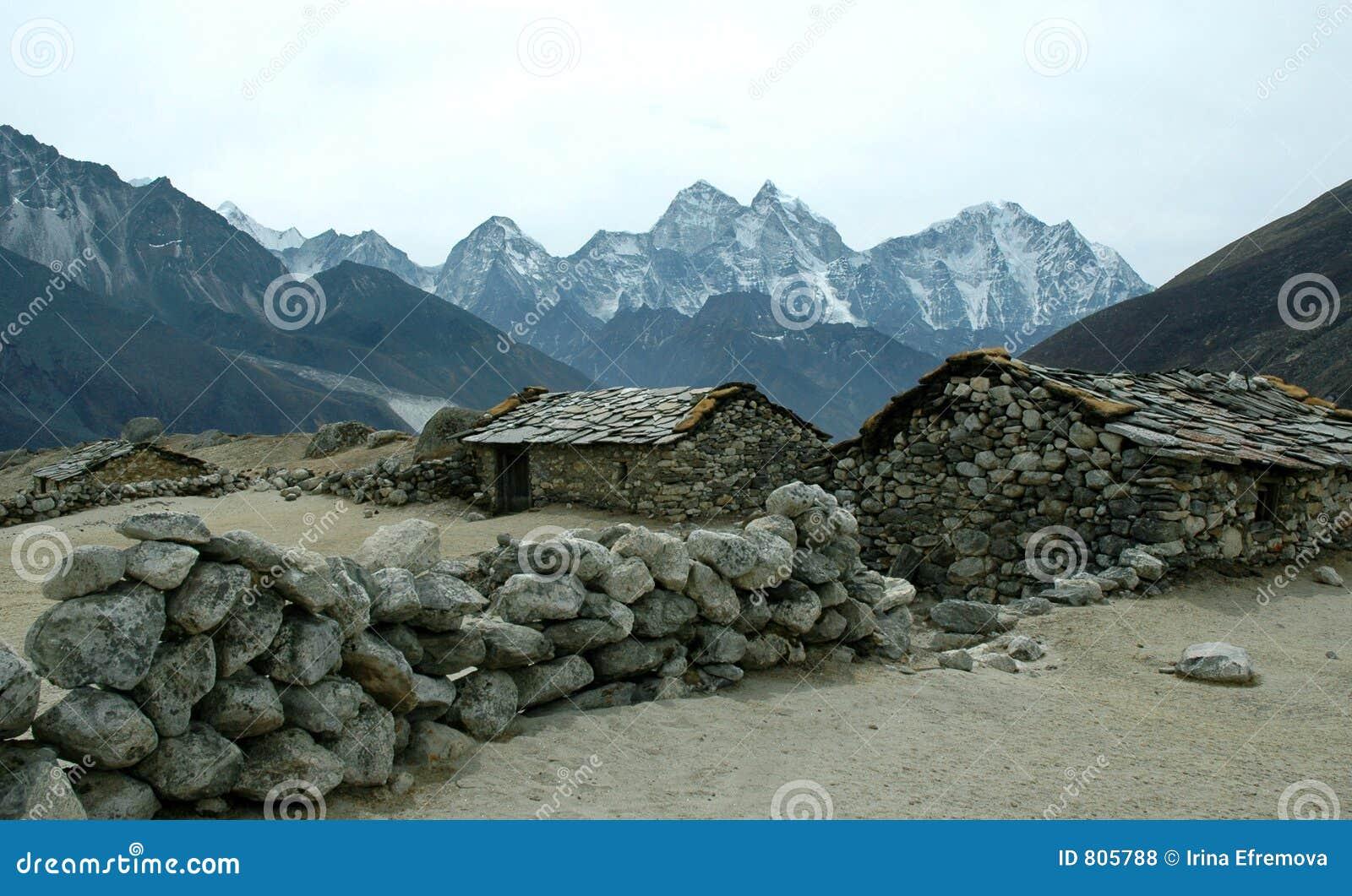 Himalaya dasani business plan