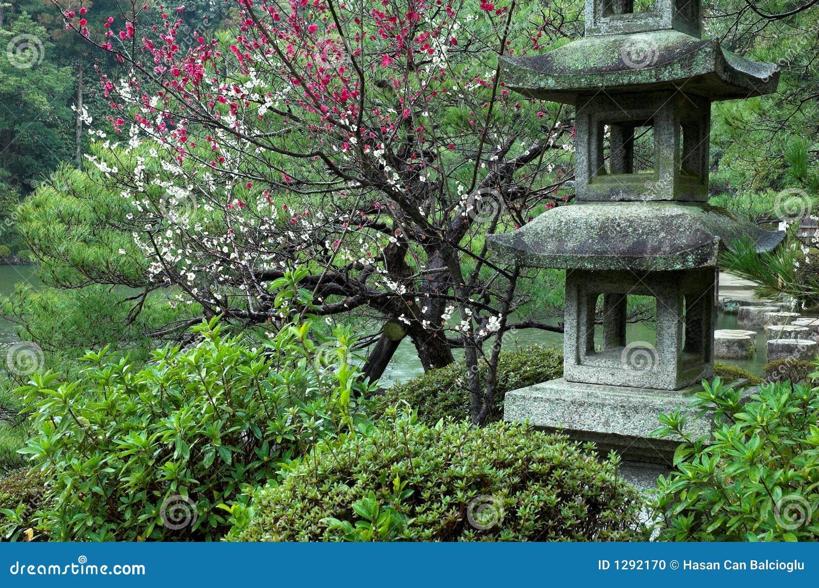 Remarkable phrase kyoto japanese garden