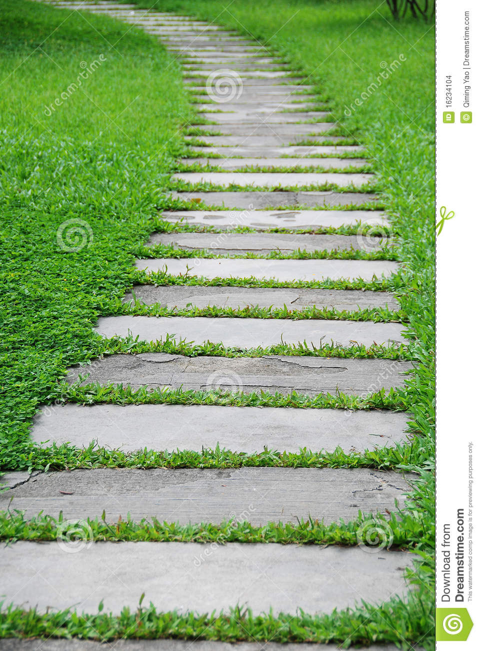 Stone path with green grass stock images image 16234104 for Stone path in grass