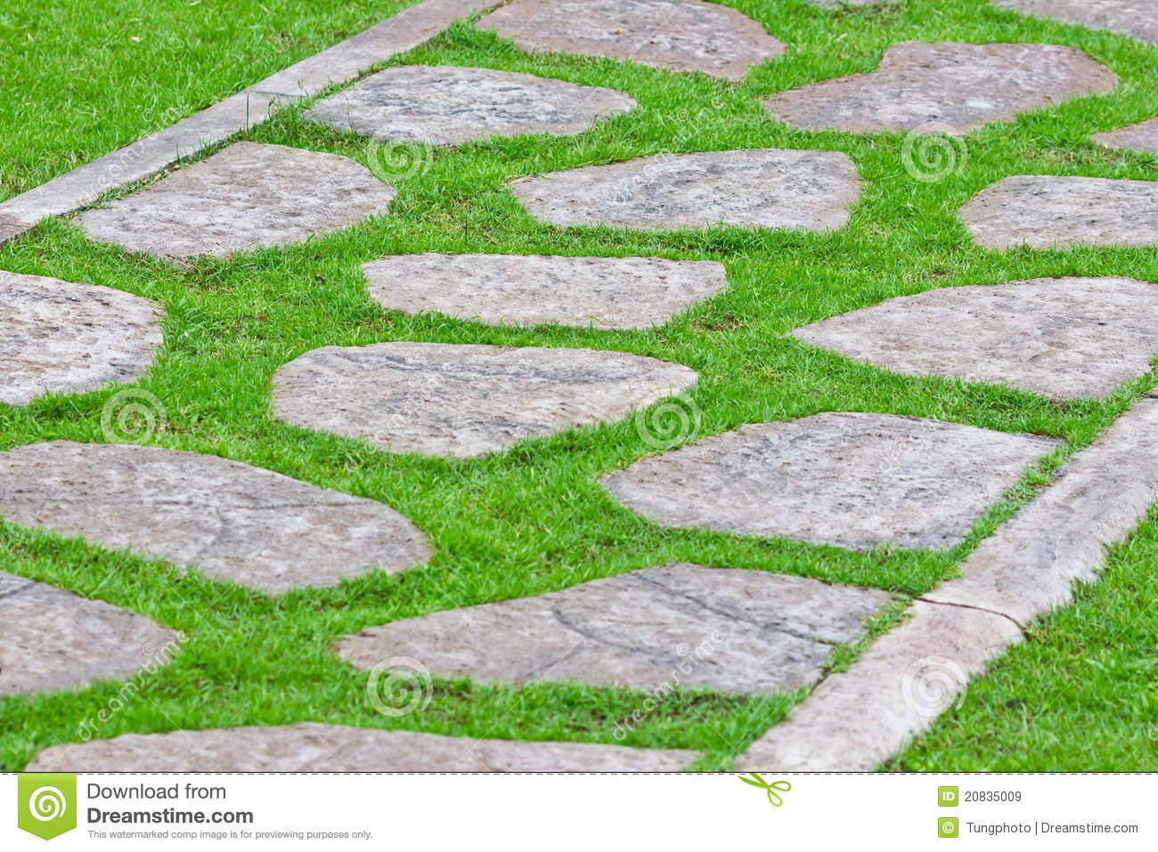 Stone path on green grass stock image image of concept for Stone path in grass