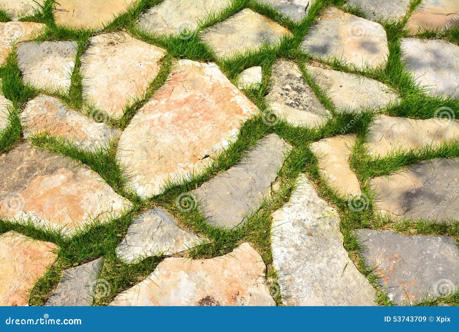 Stone Path In Green Grass Garden Pattern Stock Image