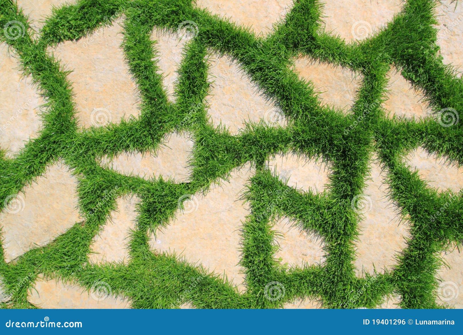 Stone path in green grass garden texture stock photo for Camino de piedra jardin