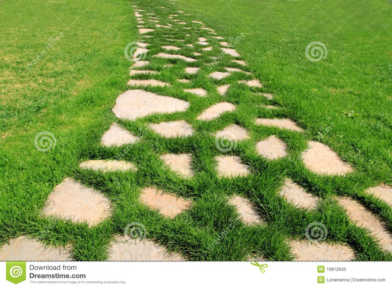 Stone path in green grass garden texture stock image for Stone path in grass