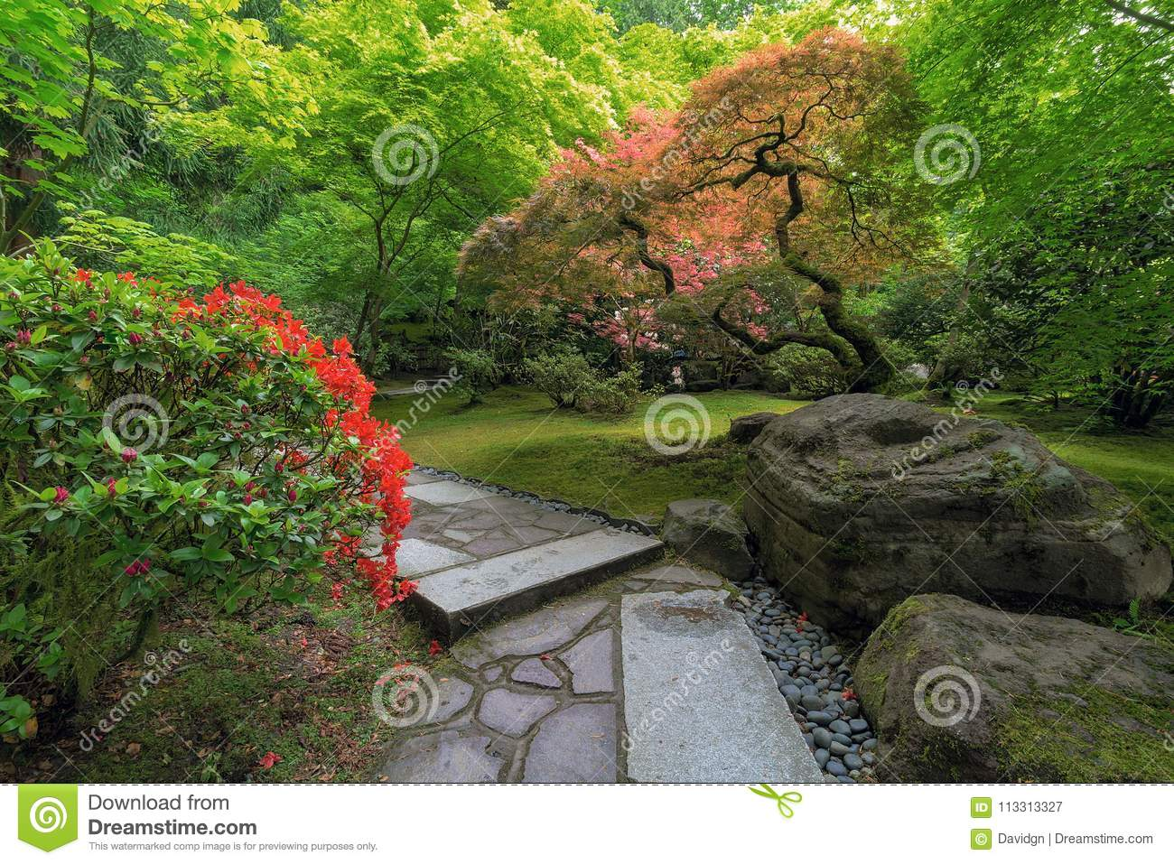 Japanese Garden Strolling Stone Path With Manicured Plants And
