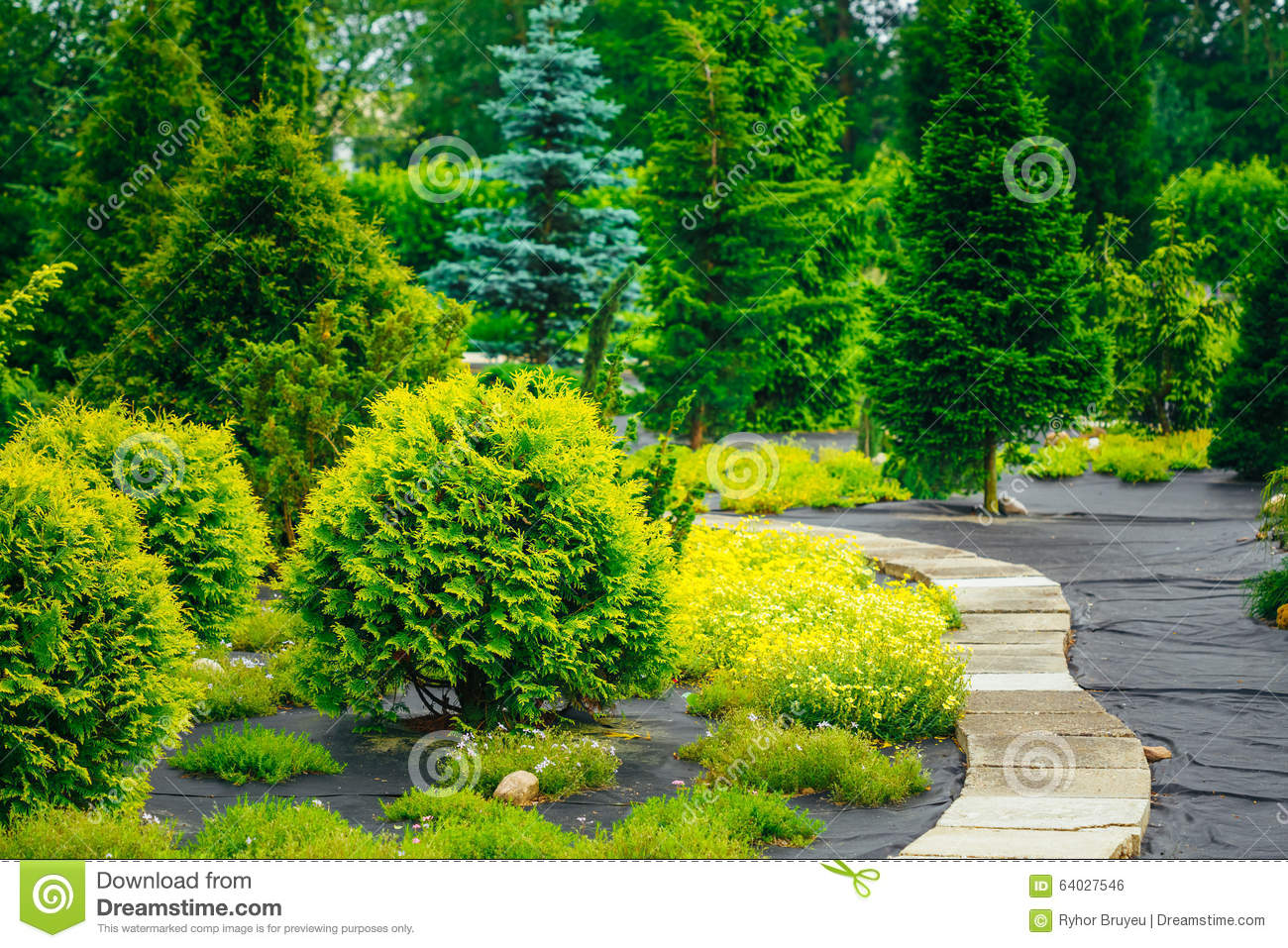 Stone pathway in garden park decorative bushes in royalty for Arbustos en jardines