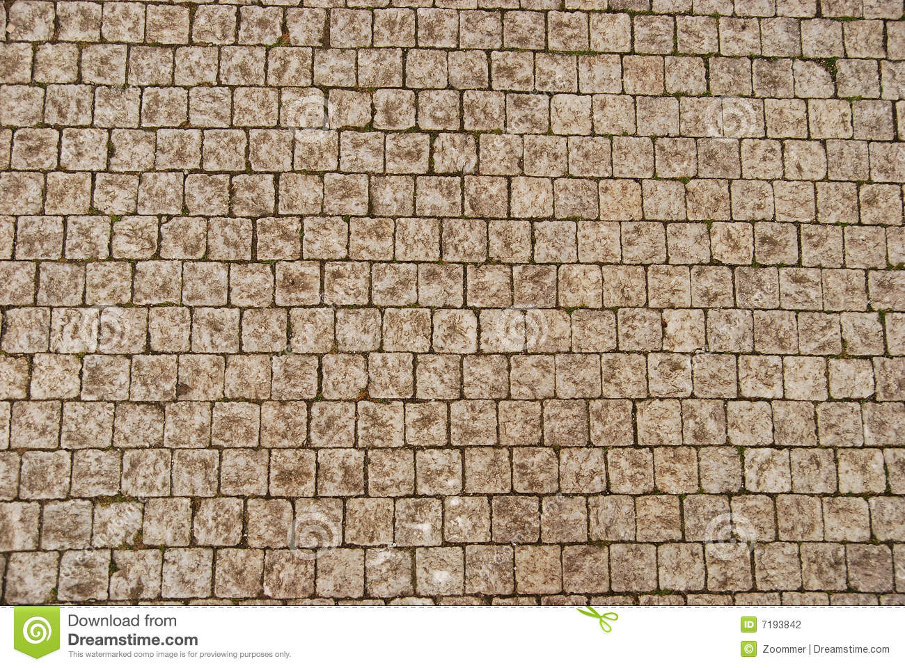 Stone Pavement Texture Stock Photography Image 7193842