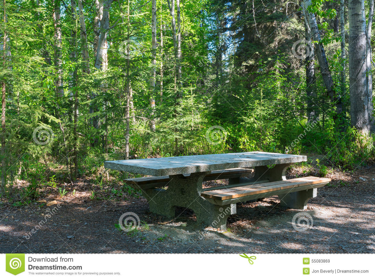 Stone Picnic Table In Woods