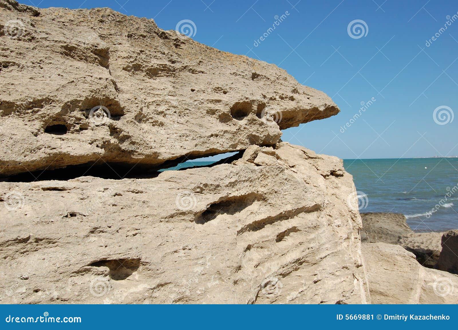 Stone rekina