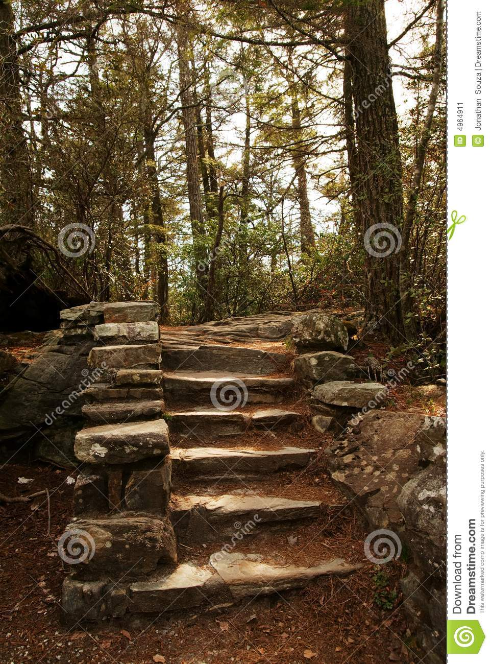 stone stair steps in nature forest stock image