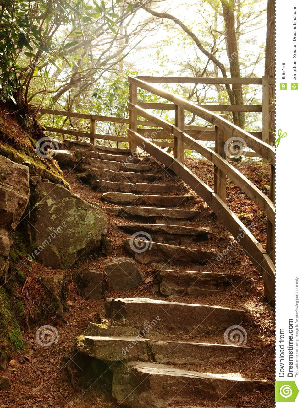 Stone Stair Steps In Nature Forest Stock Photo Image Of