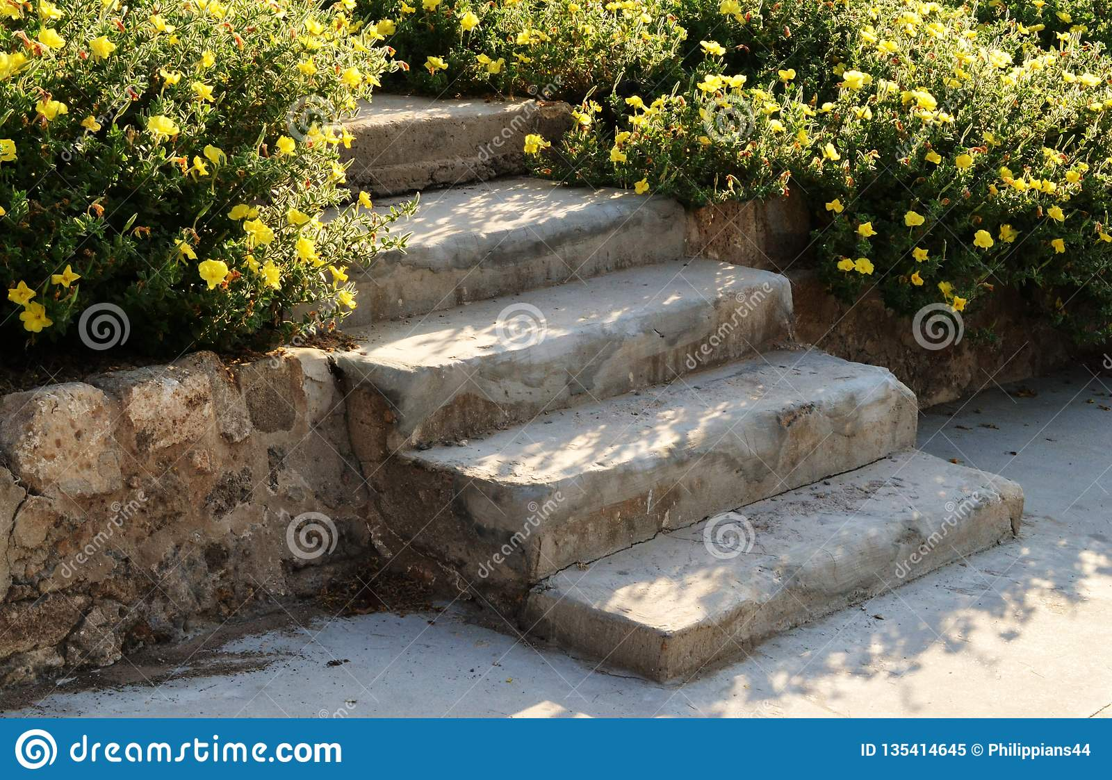 Stone staircase with wild flowers, in Akko, Israel