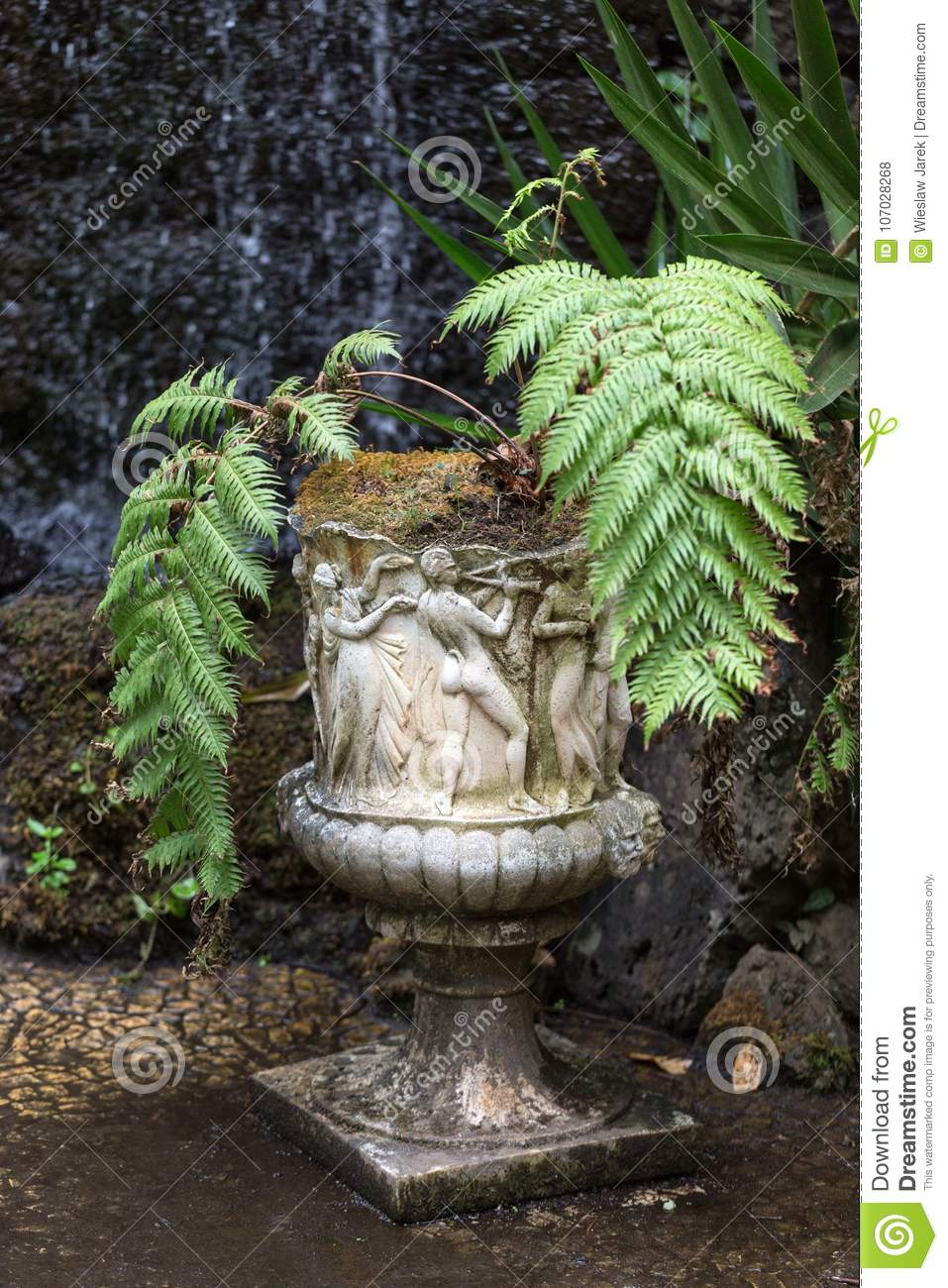 Download Stone Statues And Ferns In The Monte Palace Tropical Garden,  Funchal, Madeira,