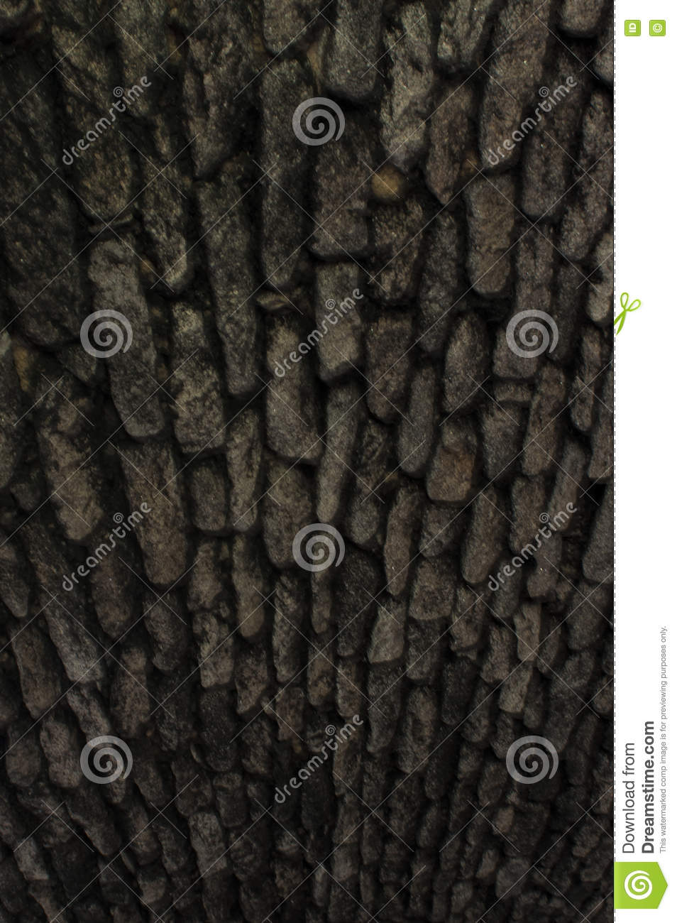 Download Stone Texture Medieval High Definition Stock Photo