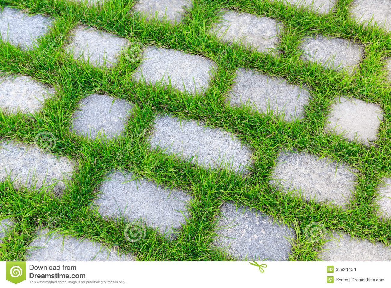 Stone Tiles With Grass In Between Stock Photo - Image of grow ...