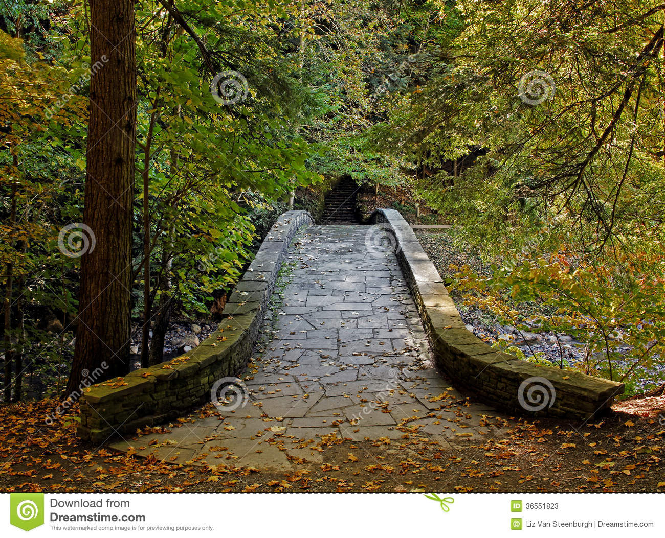 Stone walkway in garden royalty free stock photo image 34535795 - Stone Walkway Stock Photos Image 36551823
