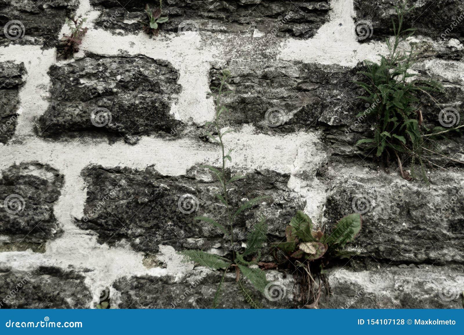 Stone wall background. abstract gray grunge texture. rocky brick wall masonry
