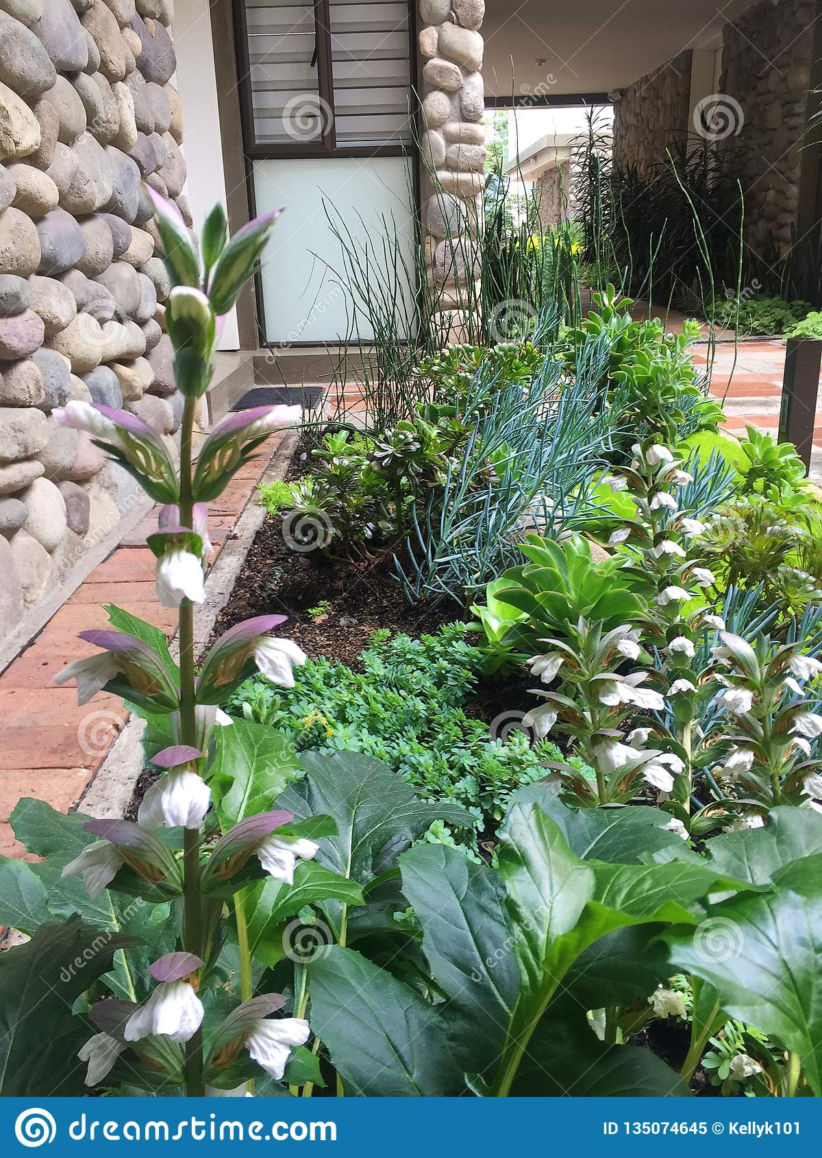 Modern Garden Landscape Design Stock Image - Image of cobblestone