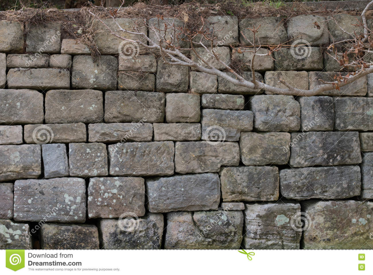 Stone Wall at Watsons Bay