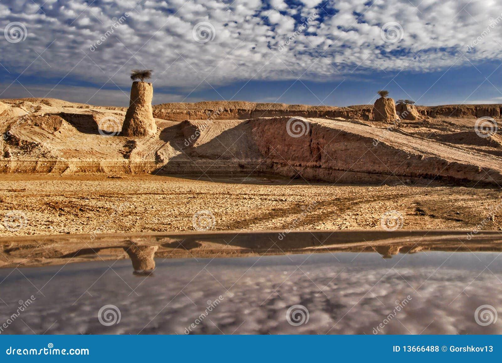Stones of the Negev