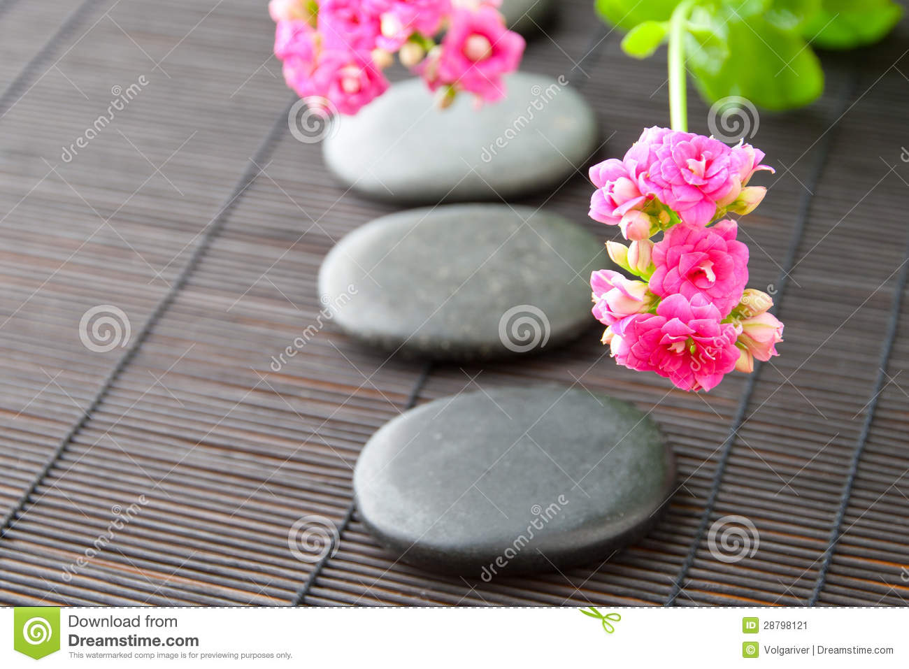Stones Path With Flowers For Zen Spa Background H Stock