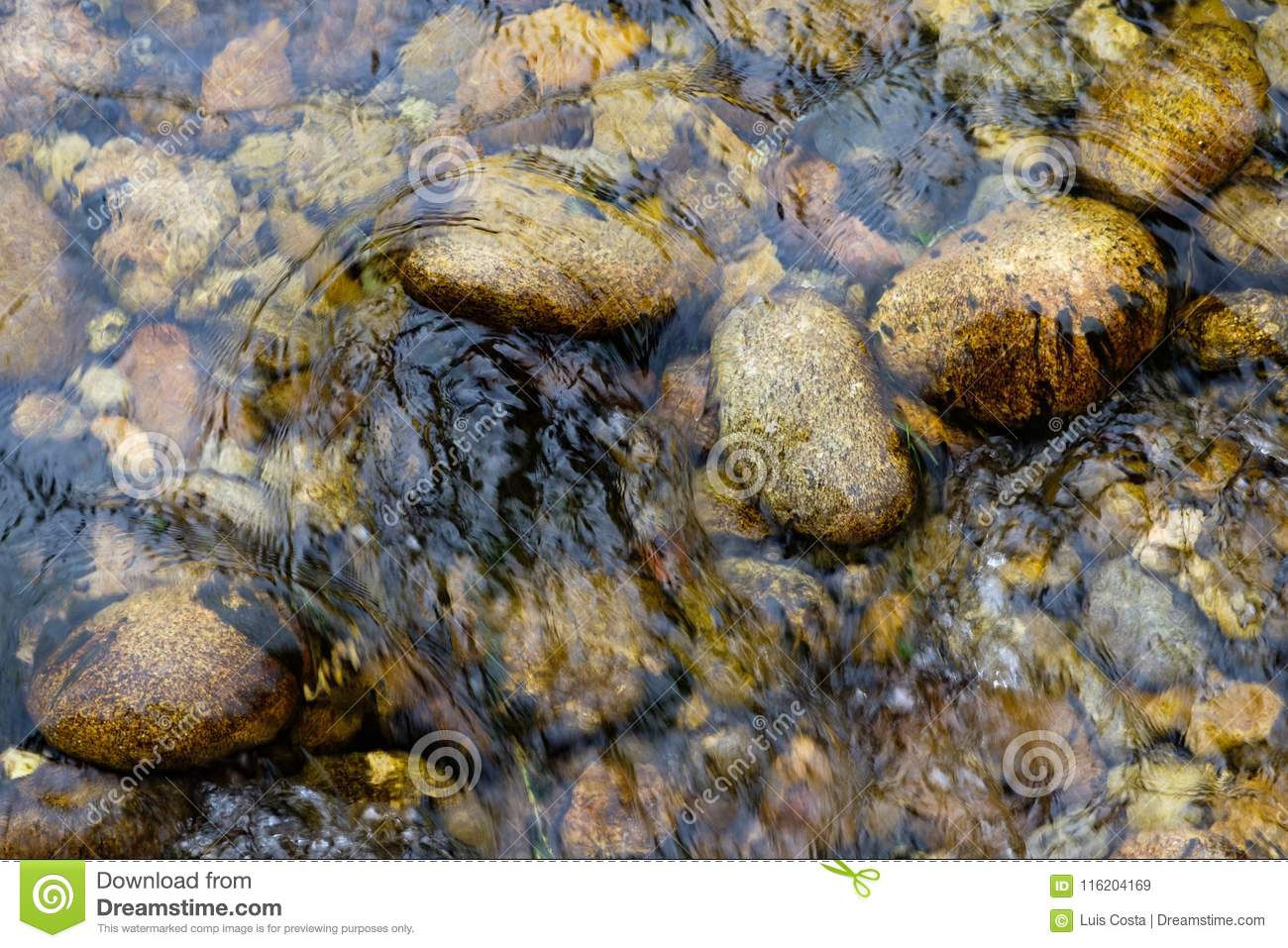 Stones on the river bottom