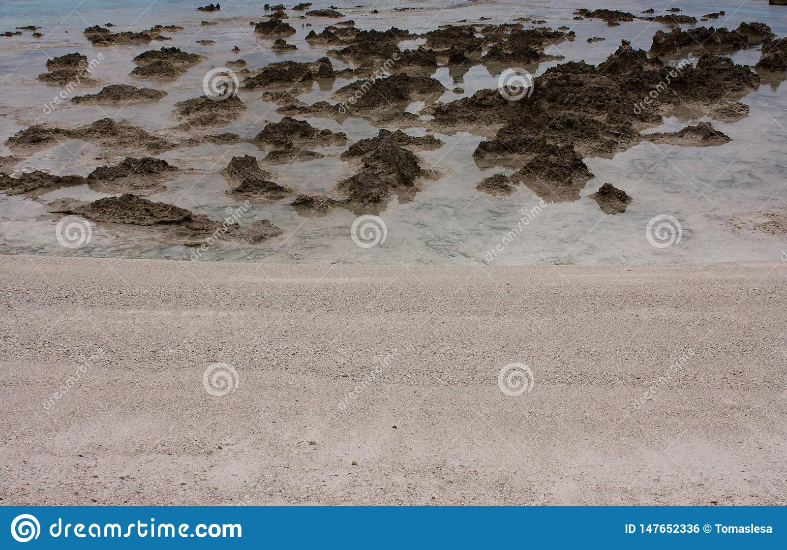 Stones And Rocks At The Beach In Tonga Stock Photo Image Of Tropical Coastline 147652336