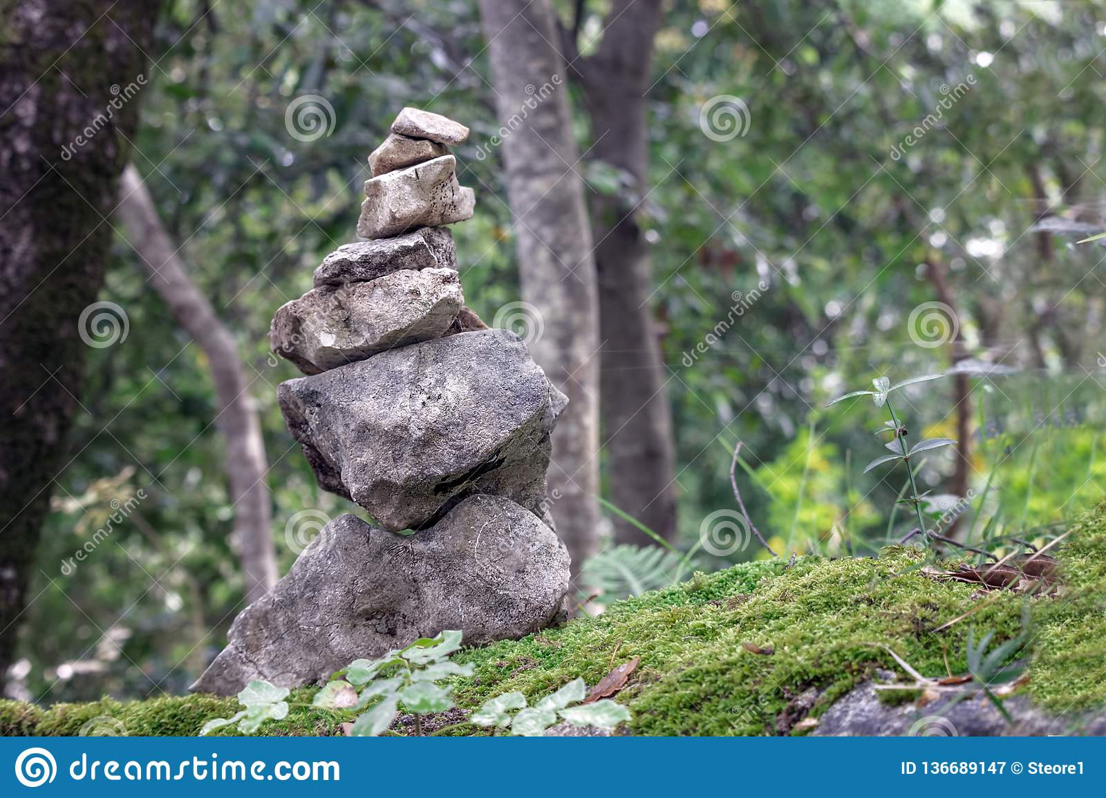 stones stacked in the forest