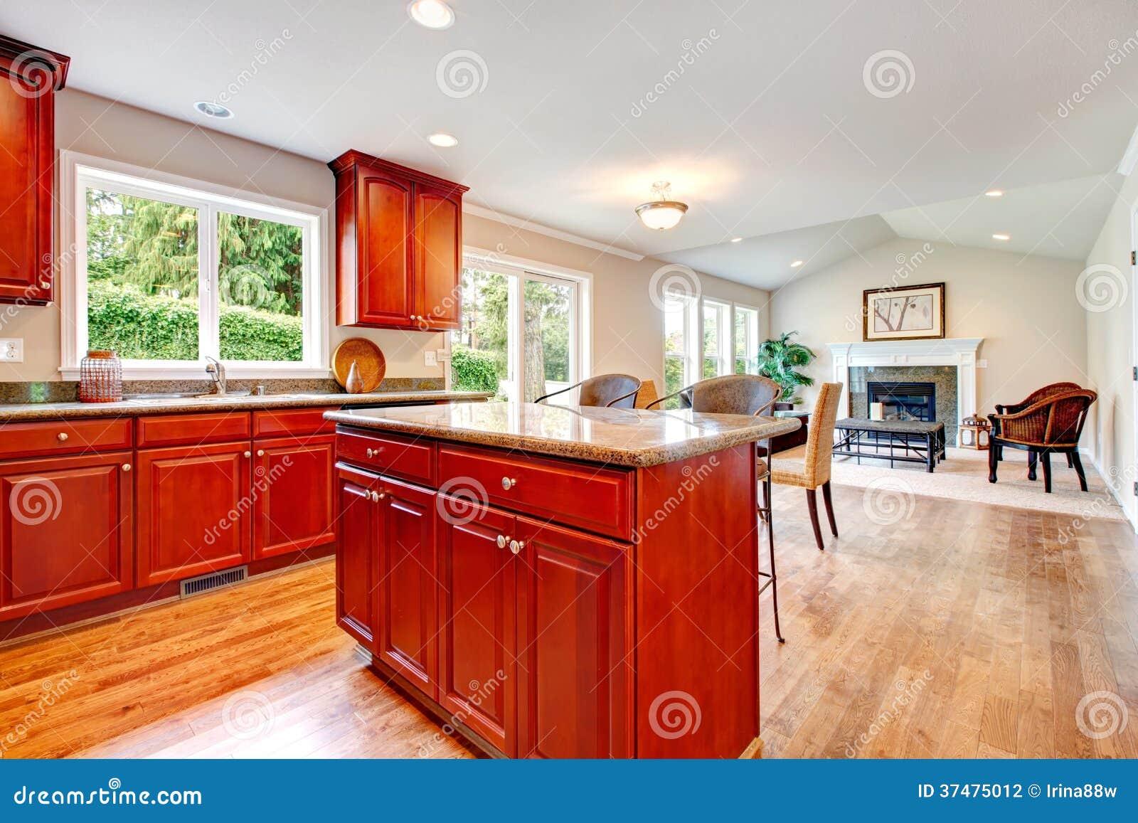 Stor designlösning för öppet plan av kök och vardagsrum arkivbild ...