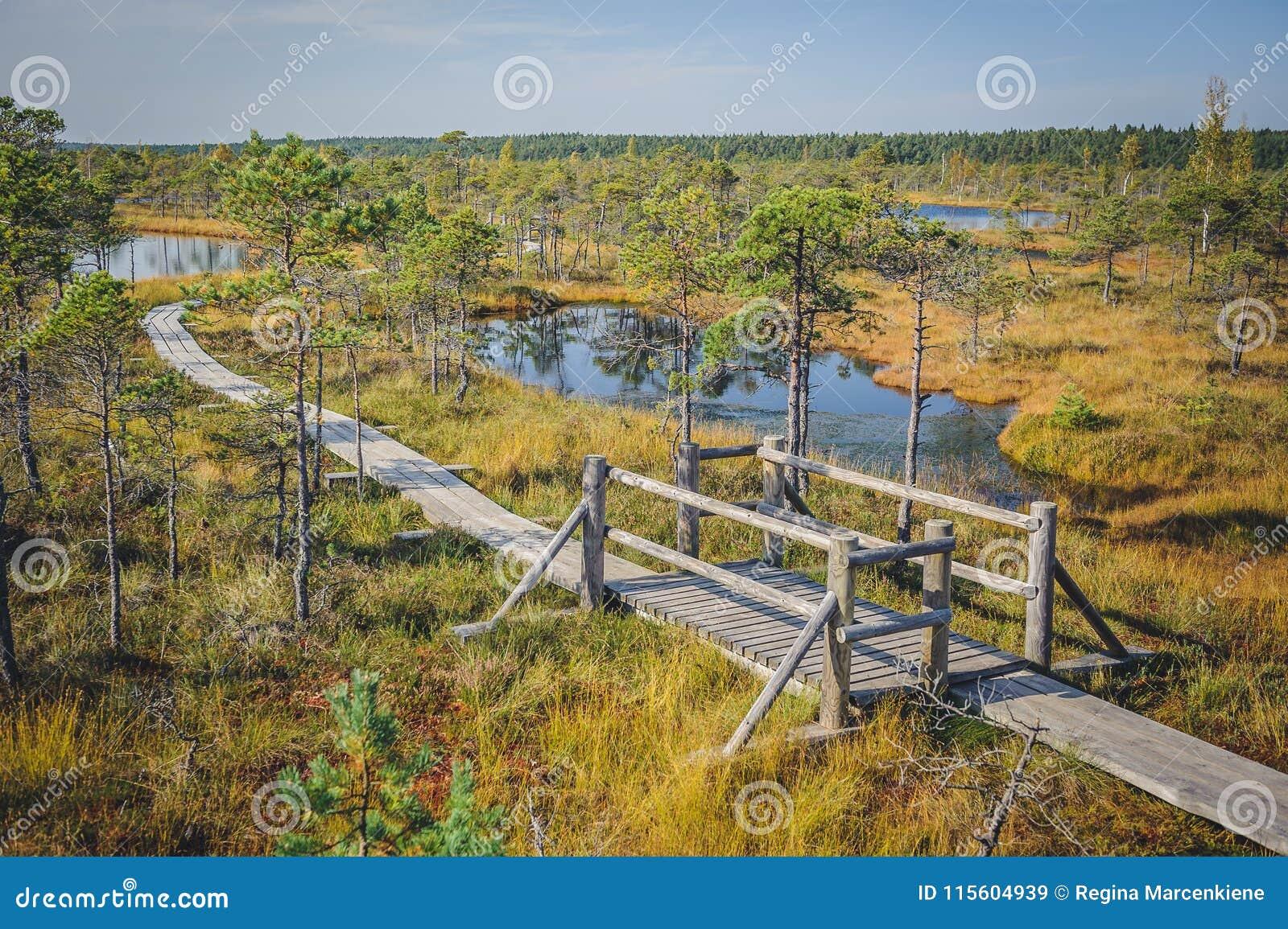 Stor Kemeri myrstrandpromenad, Kemeri nationalpark, Lettland