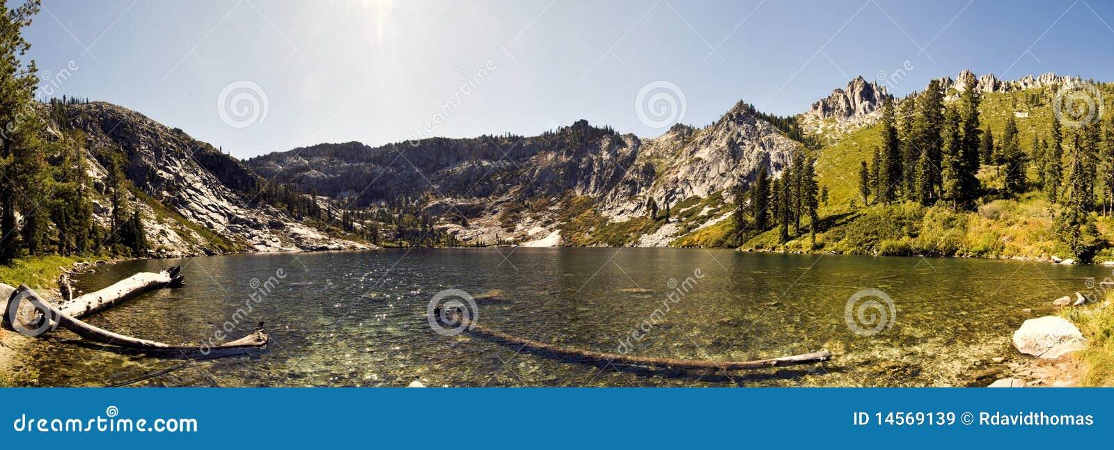 Stor lake för björn