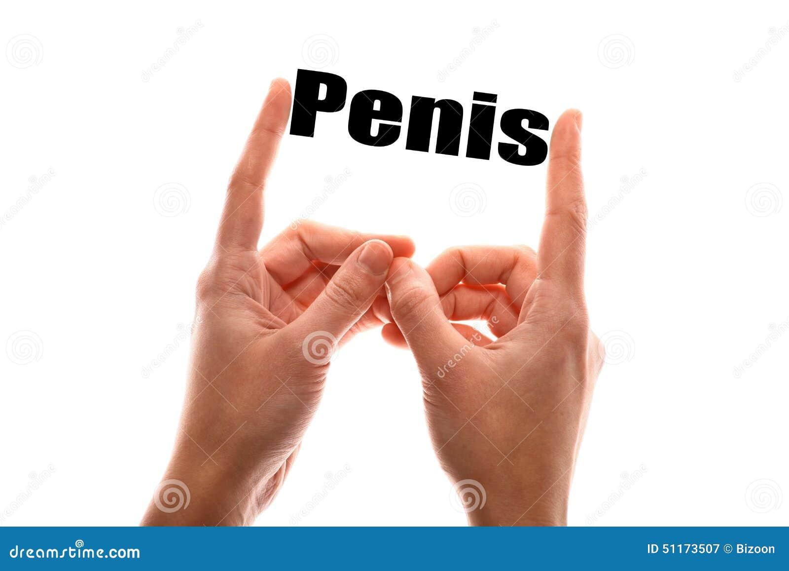 Hur stor är den mänskliga penis Teen japaness kön