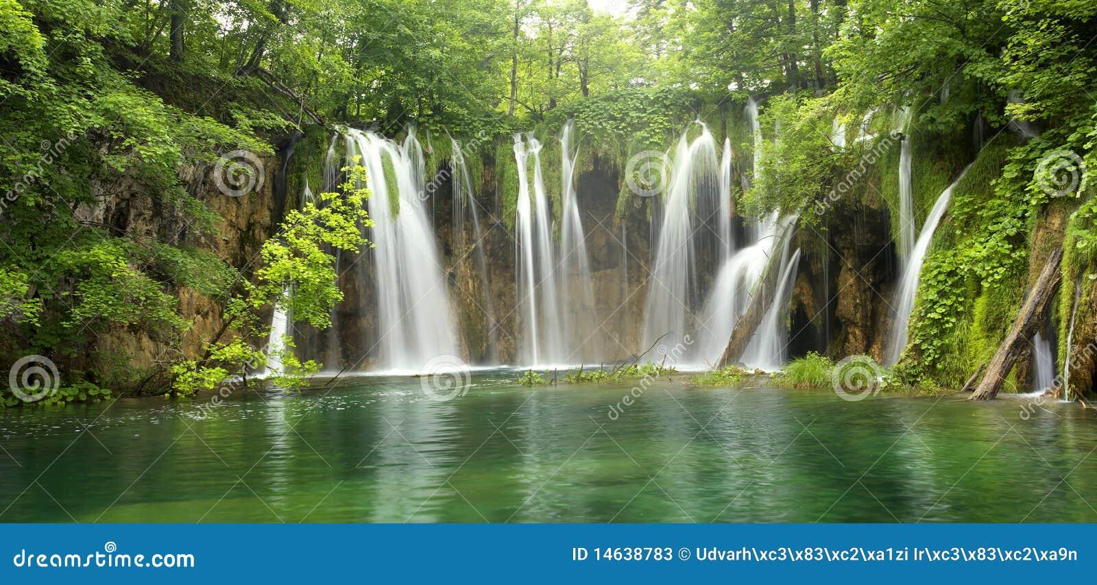 Stor skogvattenfall