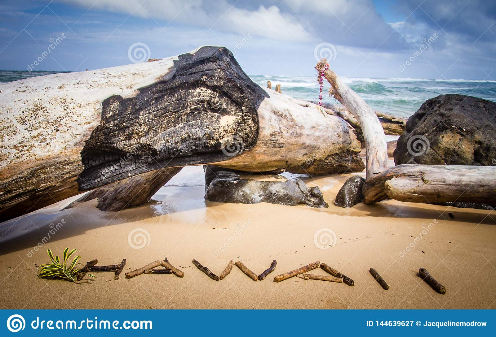 Stora drivvedstubbar på den Kuaui stranden med Hawaii stavade ut med små drivvedpinnar