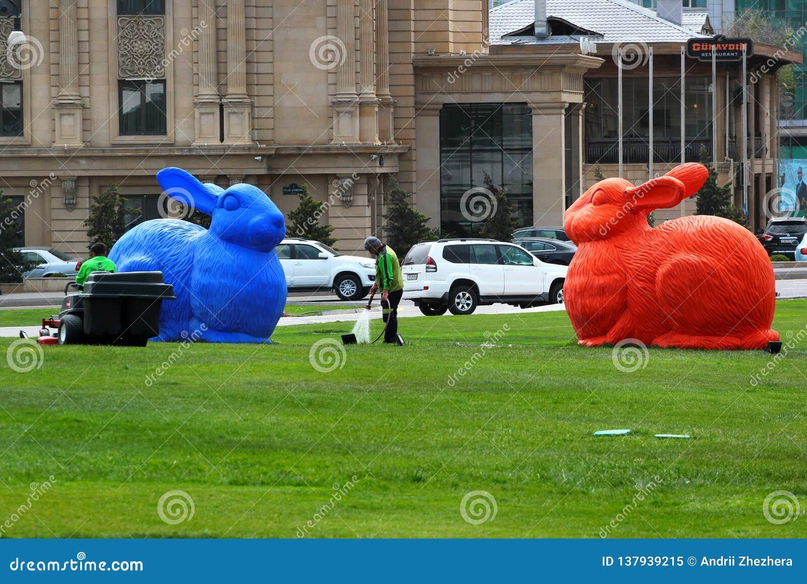 Stora färgrika kaniner i Baku, Azerbajdzjan