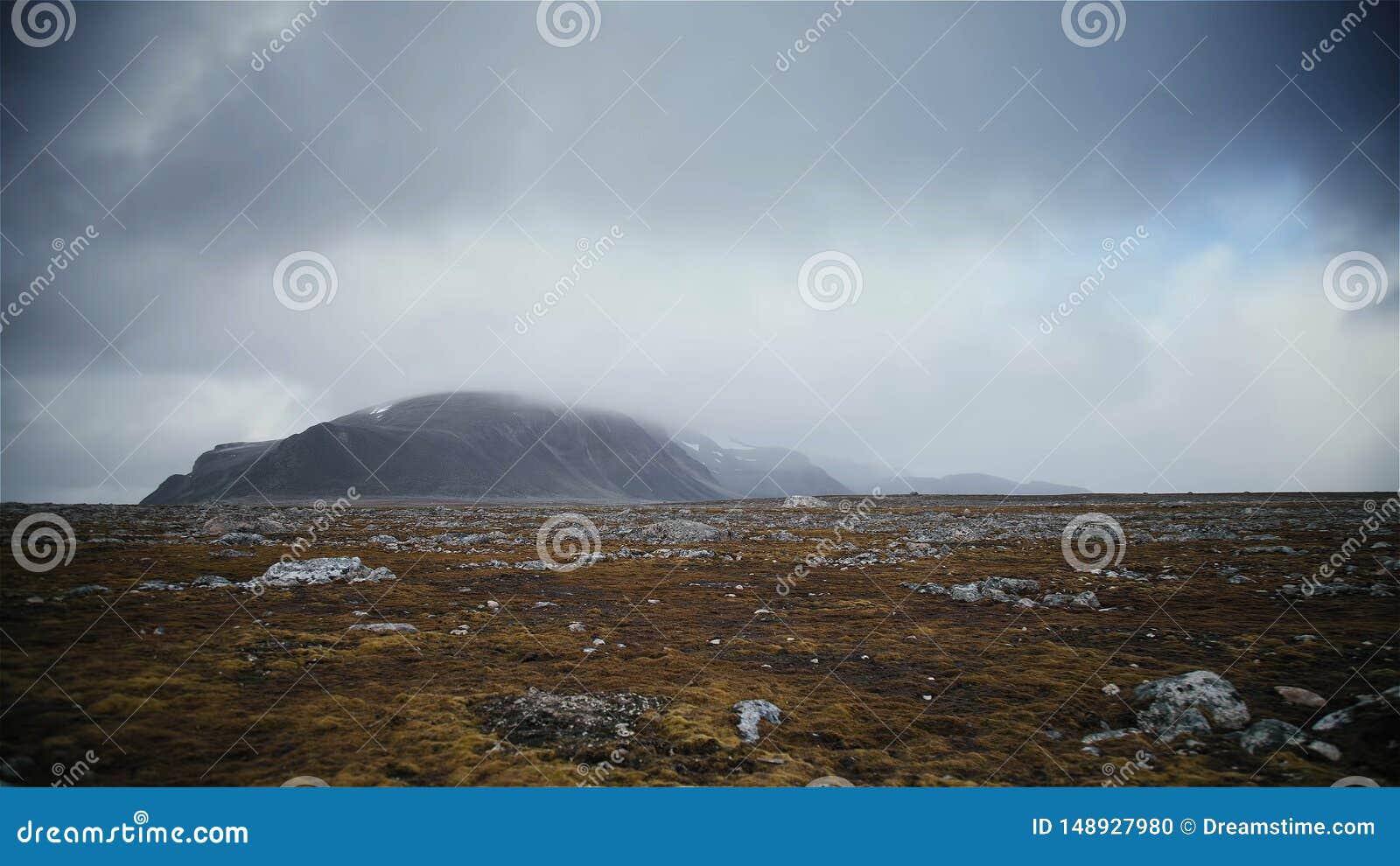 Stora h?rliga berg med vit dimma