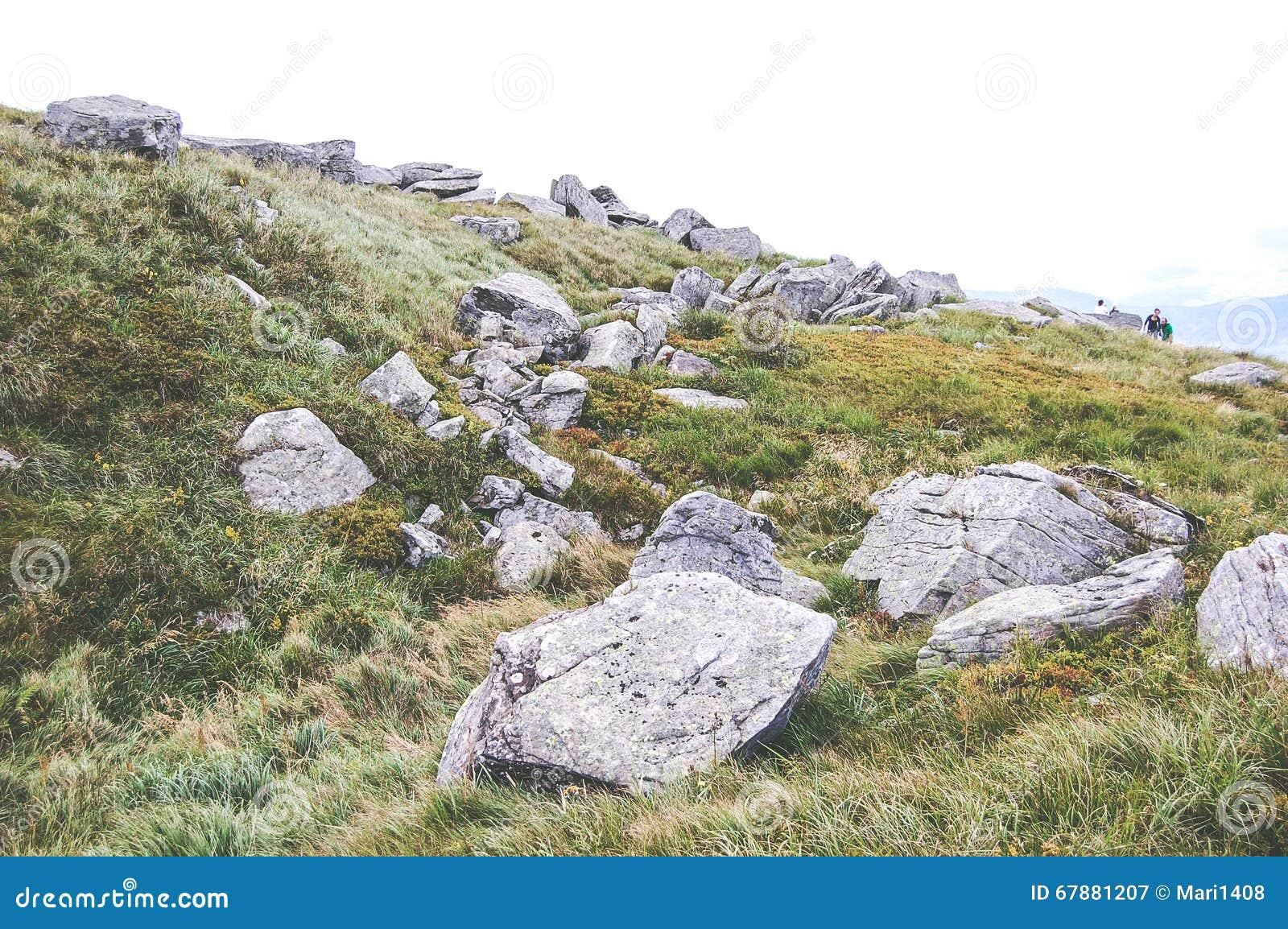 Stora stenar på fältet