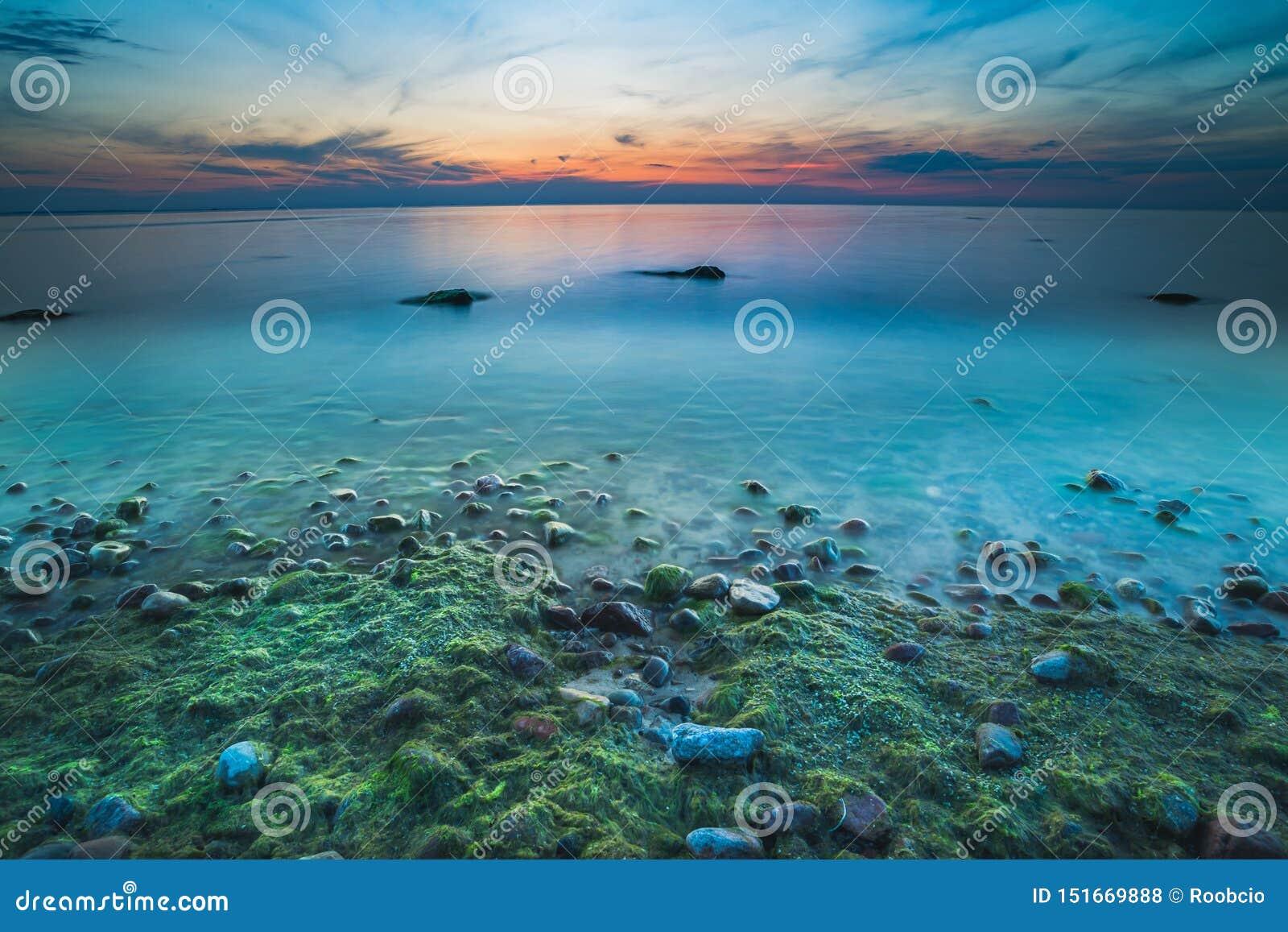 Storartad seascape på solnedgången med stenar täckte havsväxter