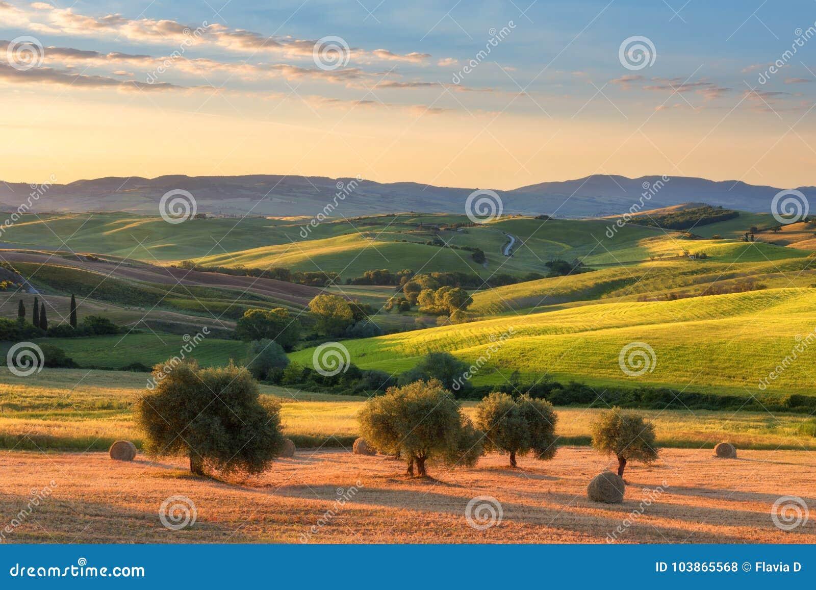 Storartat vårlandskap på soluppgång Härlig sikt av det typiska tuscan lantgårdhuset