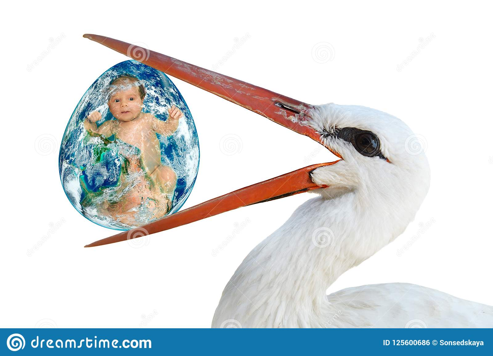 Stork holding in its beak an egg with a baby