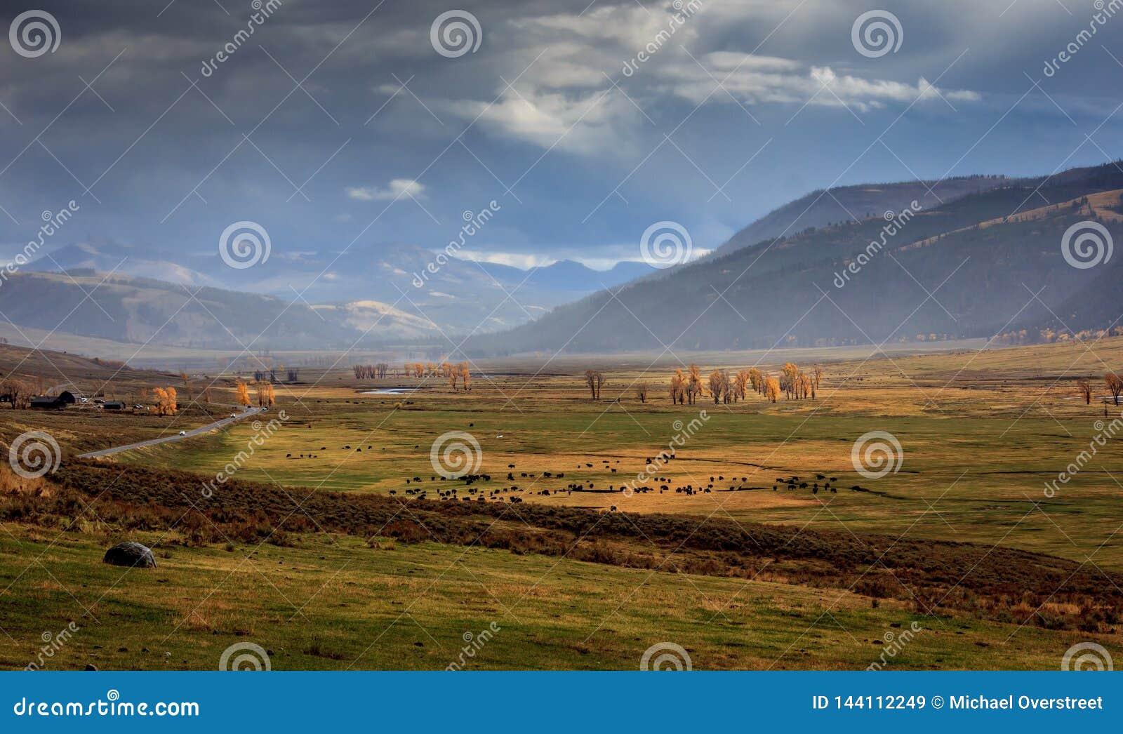 Stormachtig Lamar Valley in Yellowstone