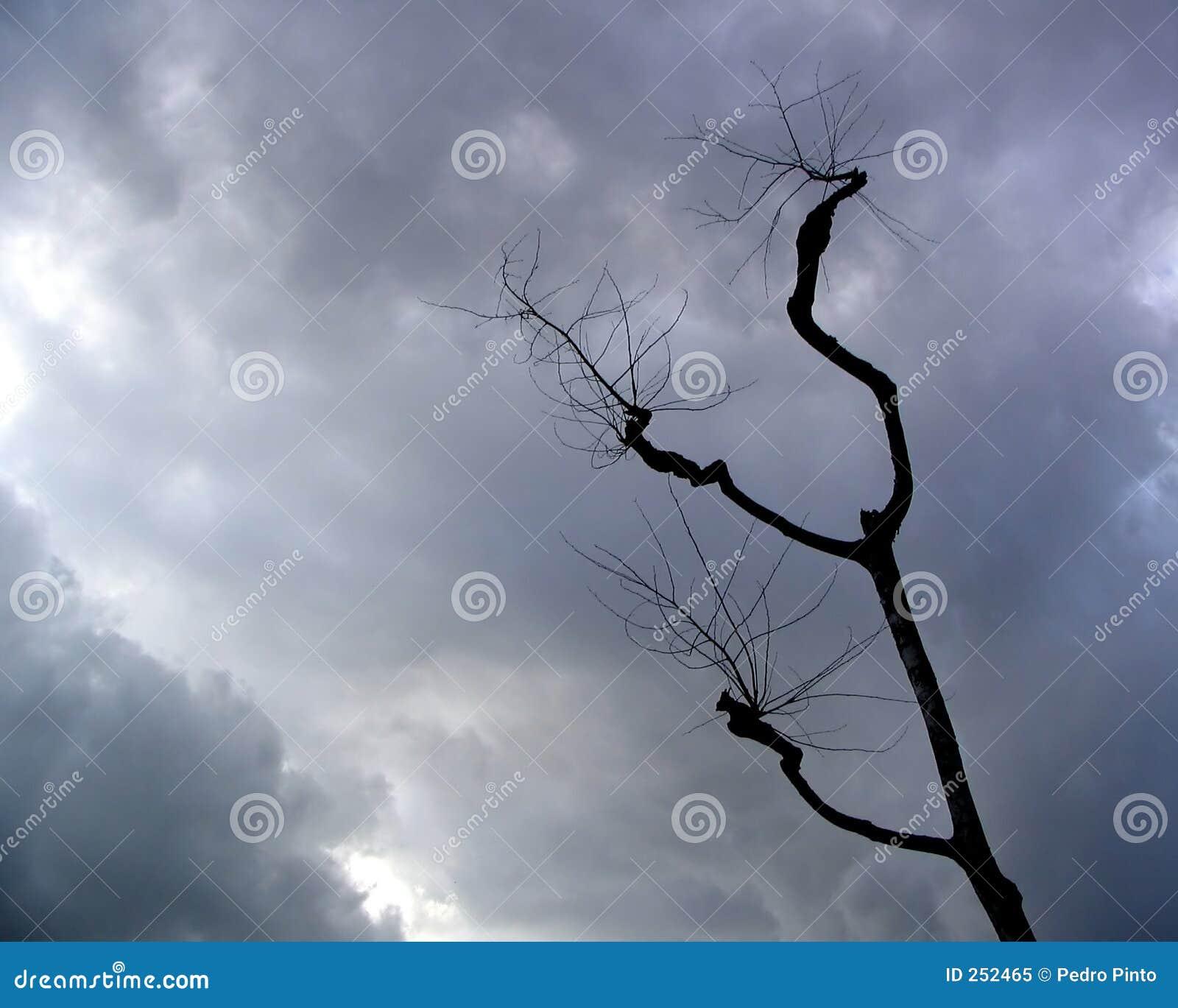 Stormachtige hemelen