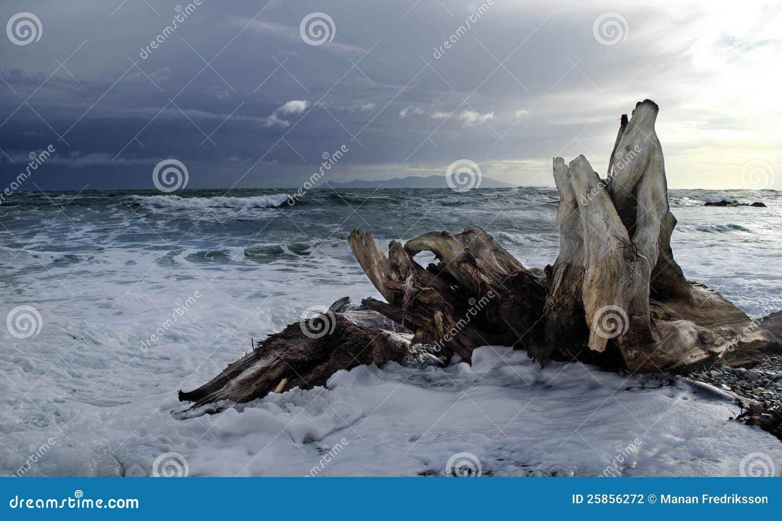 Stormachtige het Eiland van Kapiti